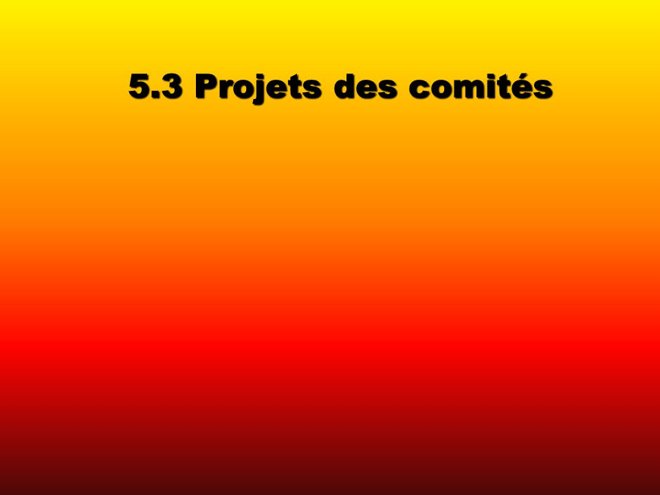 5.3 Projets des comités