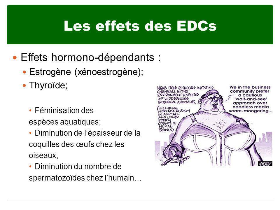 Les effets des EDCs Effets hormono-dépendants : Estrogène (xénoestrogène); Thyroïde; Féminisation des espèces aquatiques; Diminution de lépaisseur de