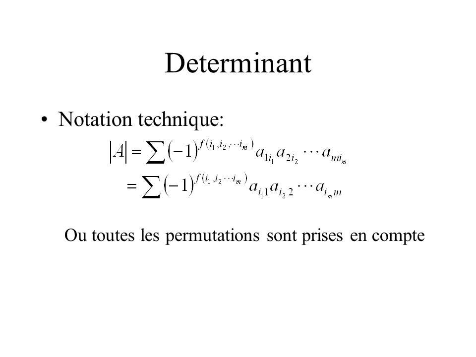 Determinant Notation technique: Ou toutes les permutations sont prises en compte