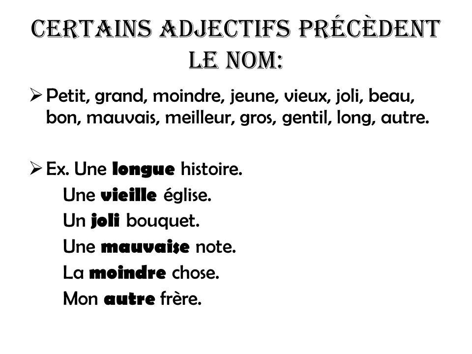 Certains adjectifs précèdent le nom: Petit, grand, moindre, jeune, vieux, joli, beau, bon, mauvais, meilleur, gros, gentil, long, autre. Ex. Une longu