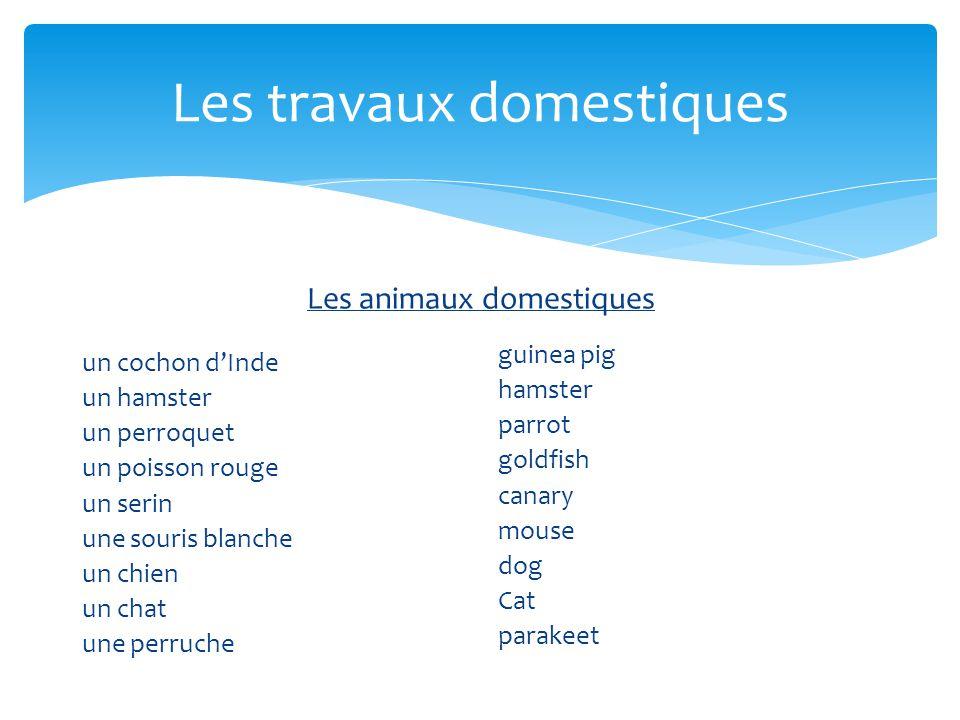 Les animaux domestiques un cochon dInde un hamster un perroquet un poisson rouge un serin une souris blanche un chien un chat une perruche guinea pig