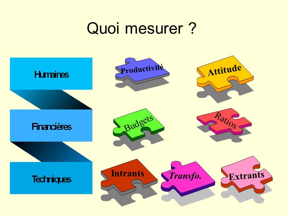 Quoi mesurer ? Productivité Attitude Budgets Ratios IntrantsTransfo. Extrants