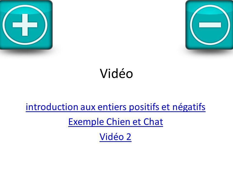 Vidéo introduction aux entiers positifs et négatifs Exemple Chien et Chat Vidéo 2