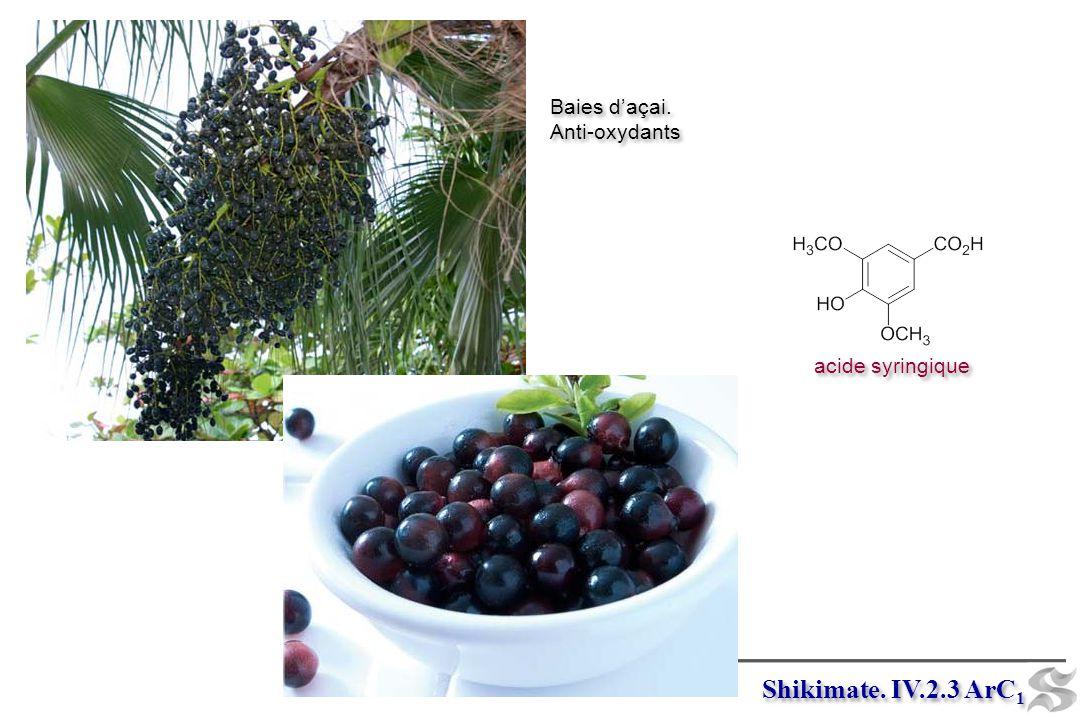 Shikimate. IV.2.3 ArC 1 acide syringique Baies daçai. Anti-oxydants Baies daçai. Anti-oxydants