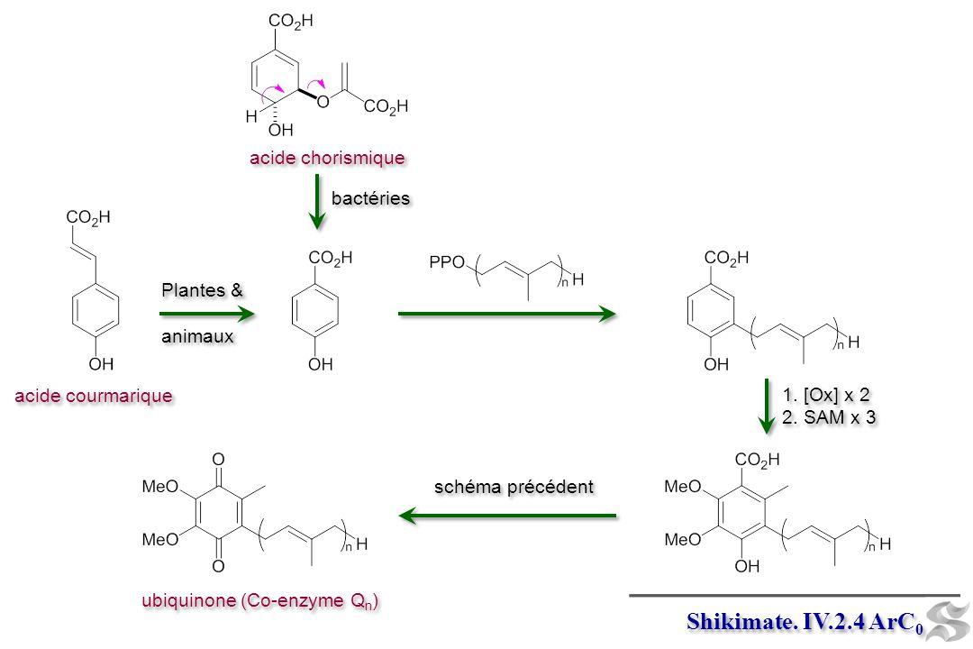 Shikimate.IV.2.4 ArC 0 Plantes & animaux Plantes & animaux acide chorismique bactéries 1.
