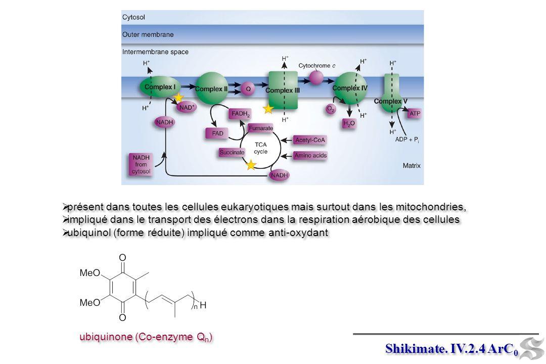 Shikimate. IV.2.4 ArC 0 ubiquinone (Co-enzyme Q n ) présent dans toutes les cellules eukaryotiques mais surtout dans les mitochondries, impliqué dans
