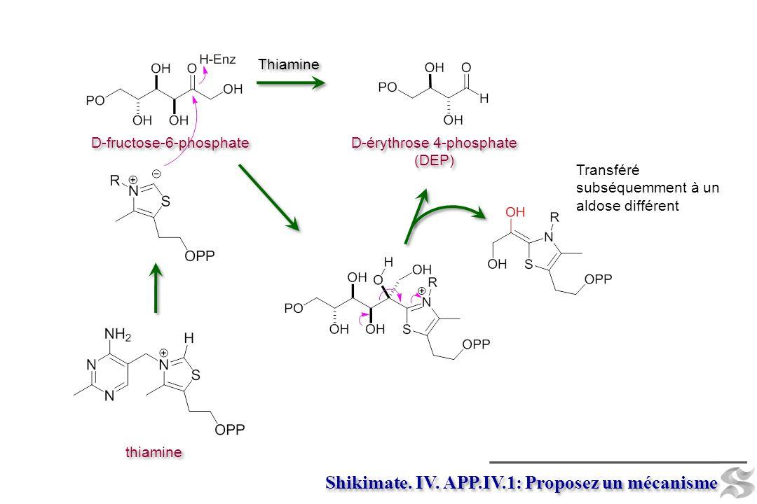D-érythrose 4-phosphate (DEP) D-érythrose 4-phosphate (DEP) thiamine Thiamine Shikimate. IV. APP.IV.1: Proposez un mécanisme Transféré subséquemment à