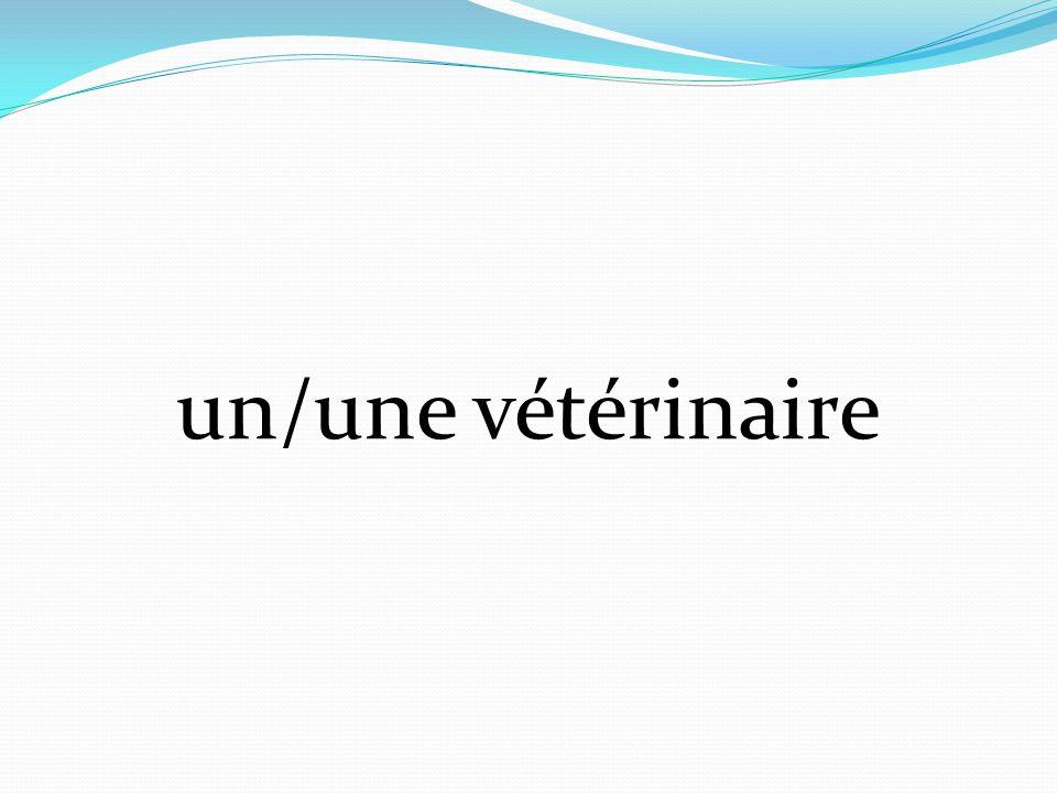 un/une vétérinaire