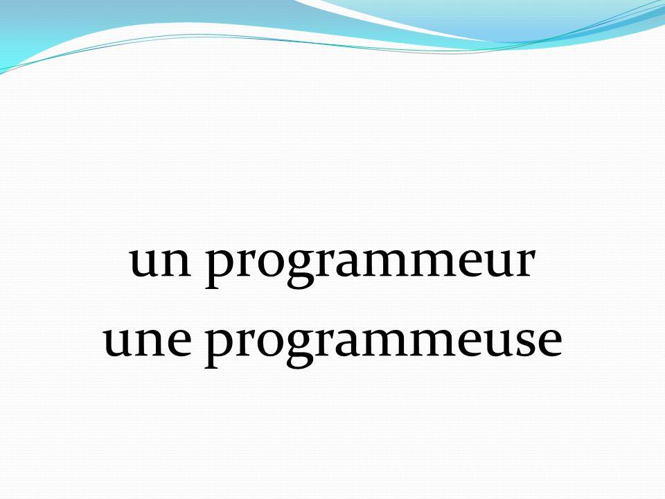 un programmeur une programmeuse