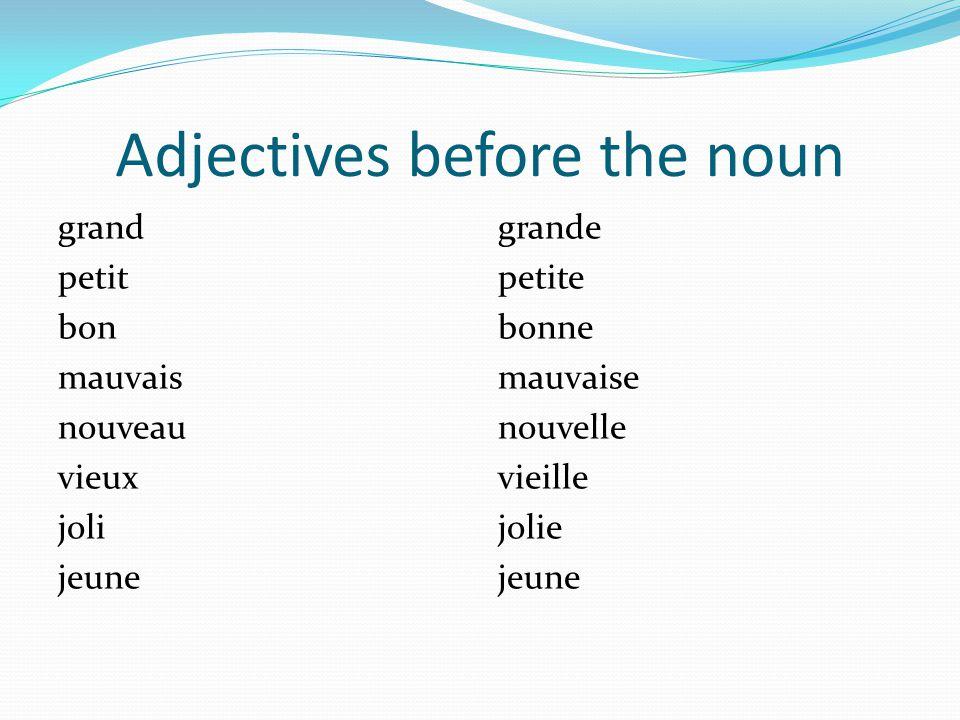 Adjectives before the noun grand petit bon mauvais nouveau vieux joli jeune grande petite bonne mauvaise nouvelle vieille jolie jeune