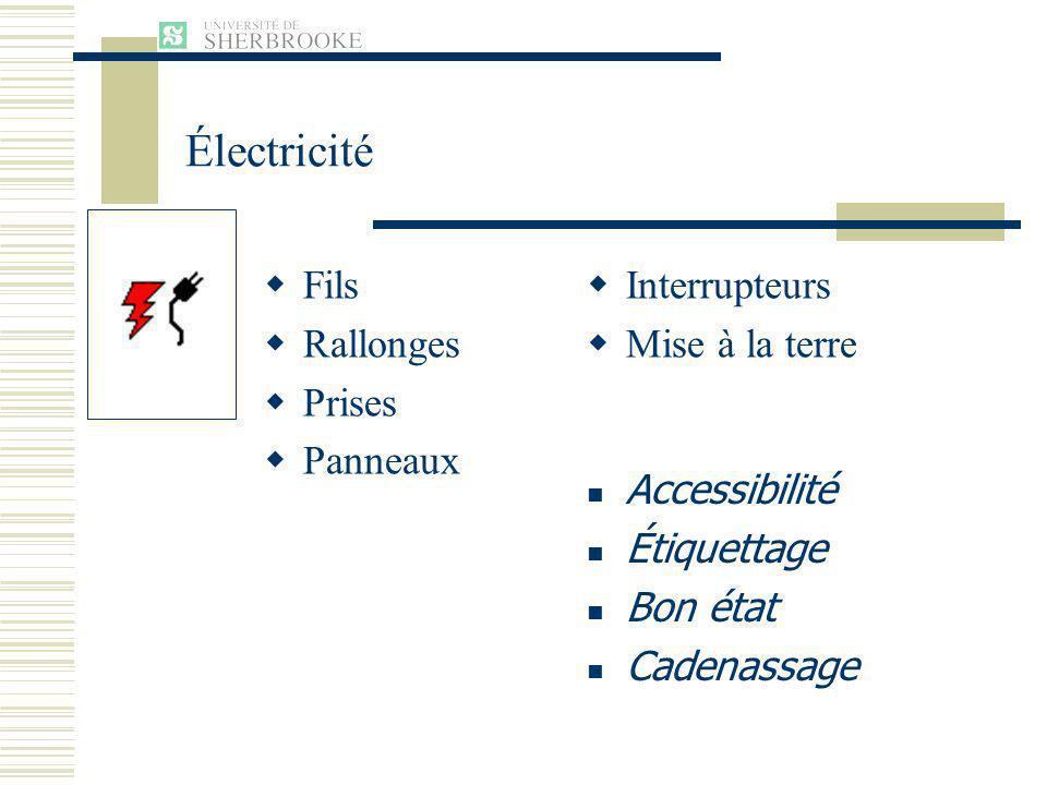 Fils Rallonges Prises Panneaux Interrupteurs Mise à la terre Accessibilité Étiquettage Bon état Cadenassage Électricité