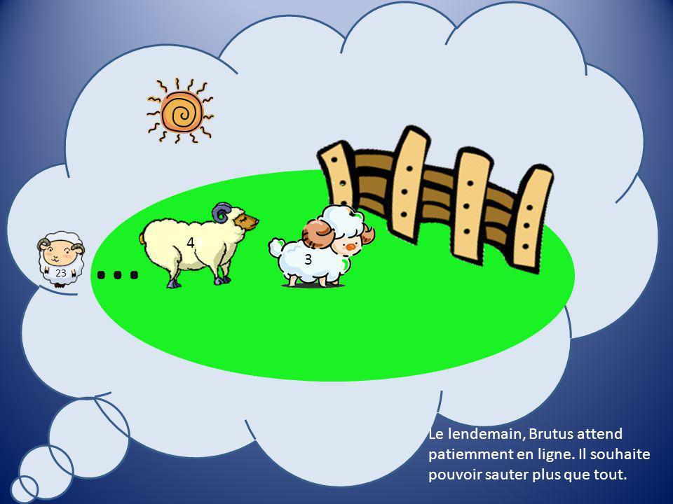 23 8 Comme Brutus a été patient, les autres moutons ont décidé de lui donner un numéro.