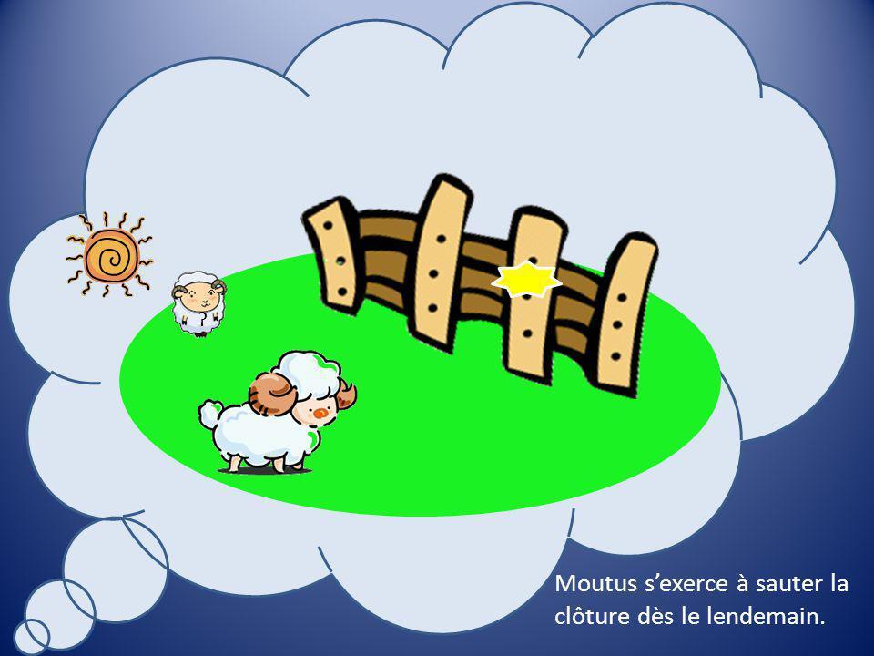 9 3 Il simagine en train de réussir à sauter par- dessus la clôture.