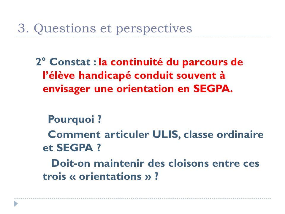 3. Questions et perspectives 2° Constat : la continuité du parcours de lélève handicapé conduit souvent à envisager une orientation en SEGPA. Pourquoi