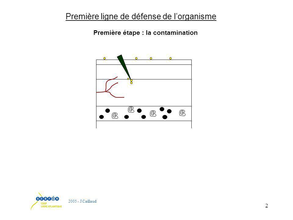 2 Première ligne de défense de lorganisme 2005 - J.Caillaud Première étape : la contamination