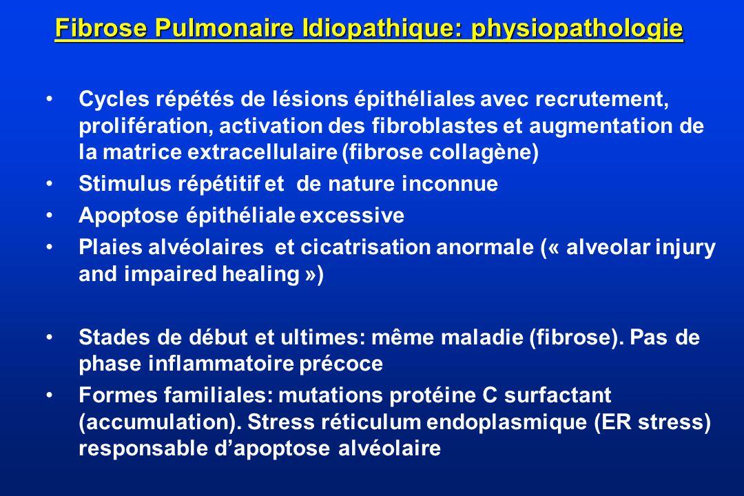 Fibrose Pulmonaire Idiopathique: physiopathologie Cycles répétés de lésions épithéliales avec recrutement, prolifération, activation des fibroblastes