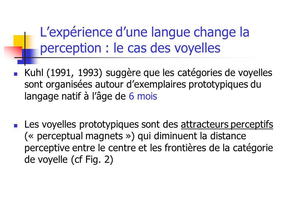 Lexpérience dune langue change la perception : le cas des voyelles Kuhl (1991, 1993) suggère que les catégories de voyelles sont organisées autour dex