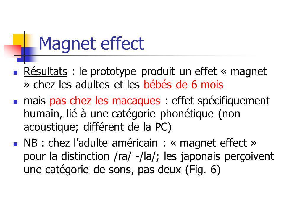 Magnet effect Résultats : le prototype produit un effet « magnet » chez les adultes et les bébés de 6 mois mais pas chez les macaques : effet spécifiq