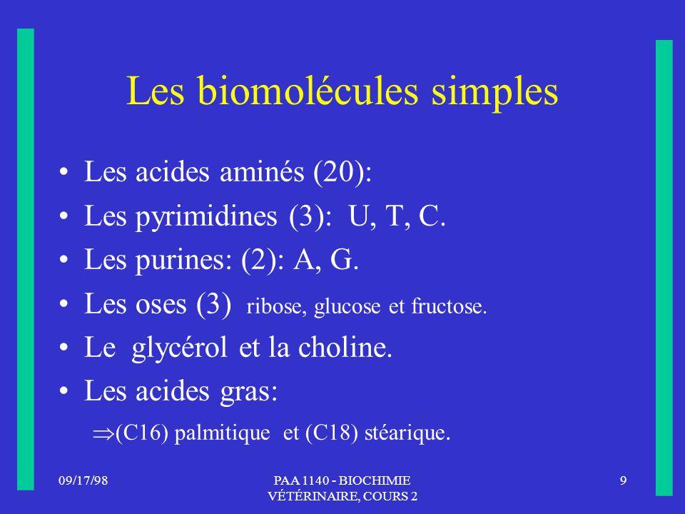 09/17/989PAA 1140 - BIOCHIMIE VÉTÉRINAIRE, COURS 2 Les biomolécules simples Les acides aminés (20): Les pyrimidines (3): U, T, C. Les purines: (2): A,
