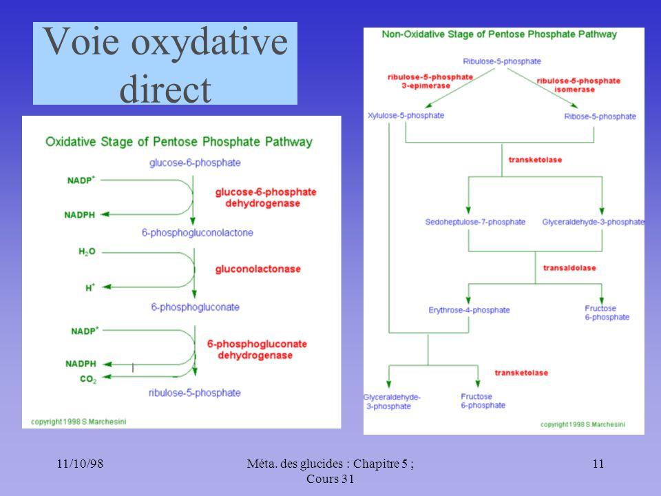 11/10/9811Méta. des glucides : Chapitre 5 ; Cours 31 Voie oxydative direct