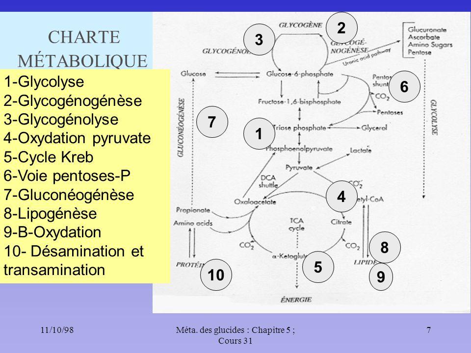 11/10/987Méta. des glucides : Chapitre 5 ; Cours 31 CHARTE MÉTABOLIQUE 1 1-Glycolyse 2-Glycogénogénèse 3-Glycogénolyse 4-Oxydation pyruvate 5-Cycle Kr
