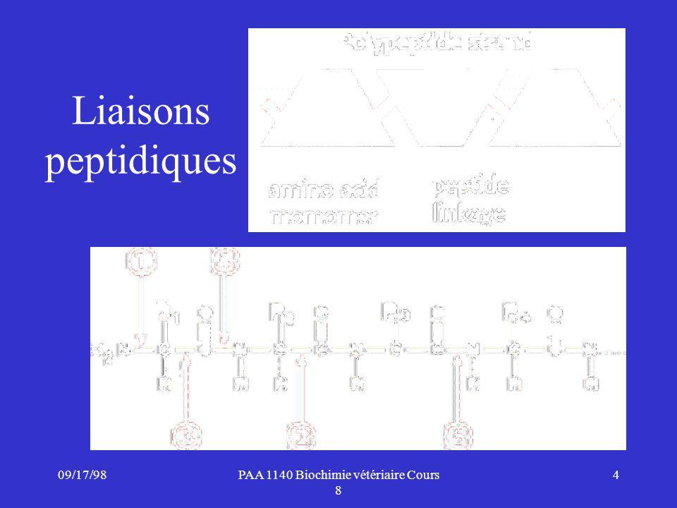 09/17/984PAA 1140 Biochimie vétériaire Cours 8 Liaisons peptidiques