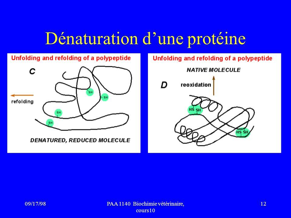 09/17/9812PAA 1140 Biochimie vétérinaire, cours10 Dénaturation dune protéine