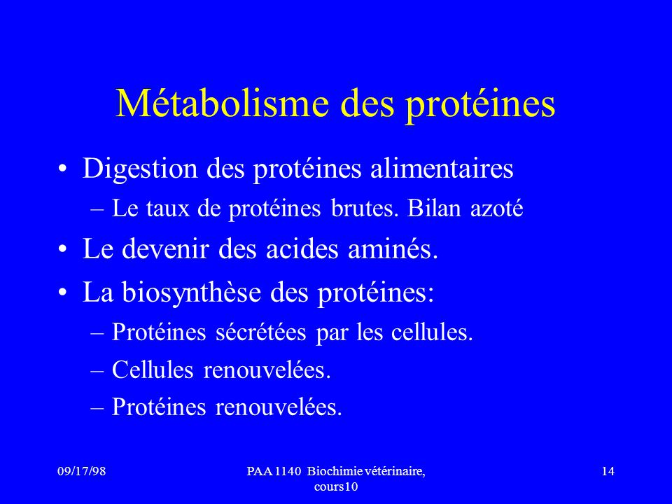 09/17/9814PAA 1140 Biochimie vétérinaire, cours10 Métabolisme des protéines Digestion des protéines alimentaires –Le taux de protéines brutes. Bilan a