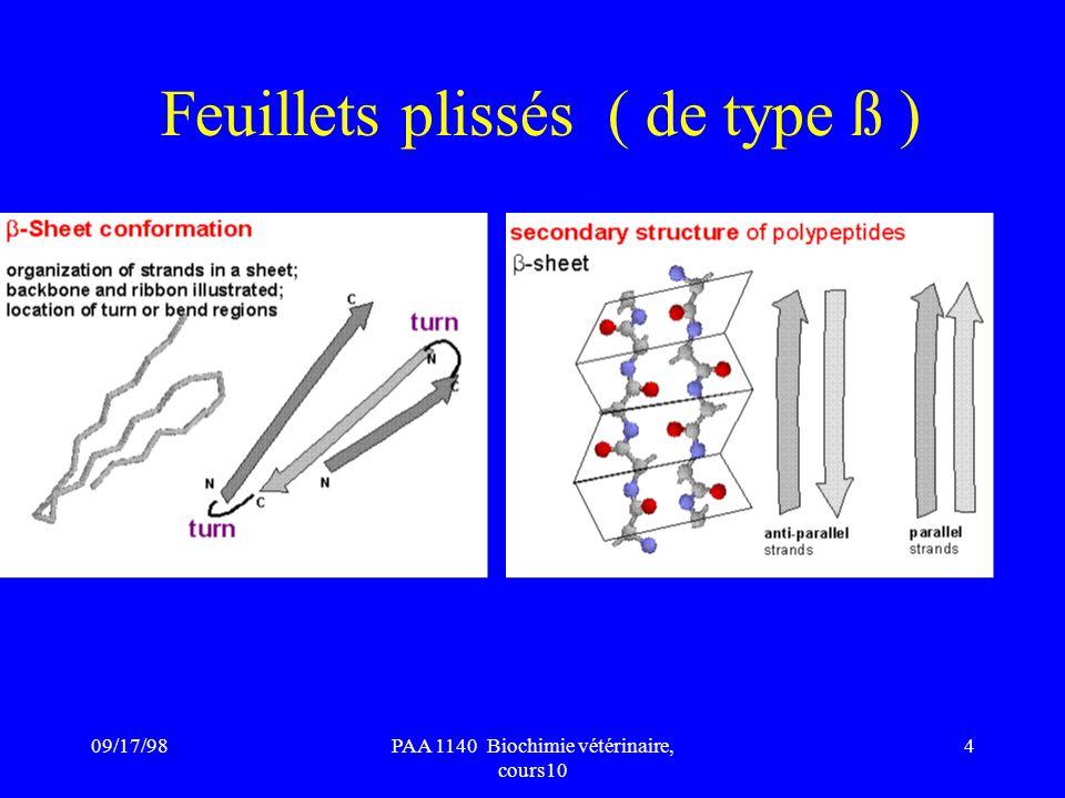 09/17/984PAA 1140 Biochimie vétérinaire, cours10 Feuillets plissés ( de type ß )