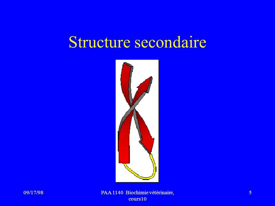 09/17/985PAA 1140 Biochimie vétérinaire, cours10 Structure secondaire