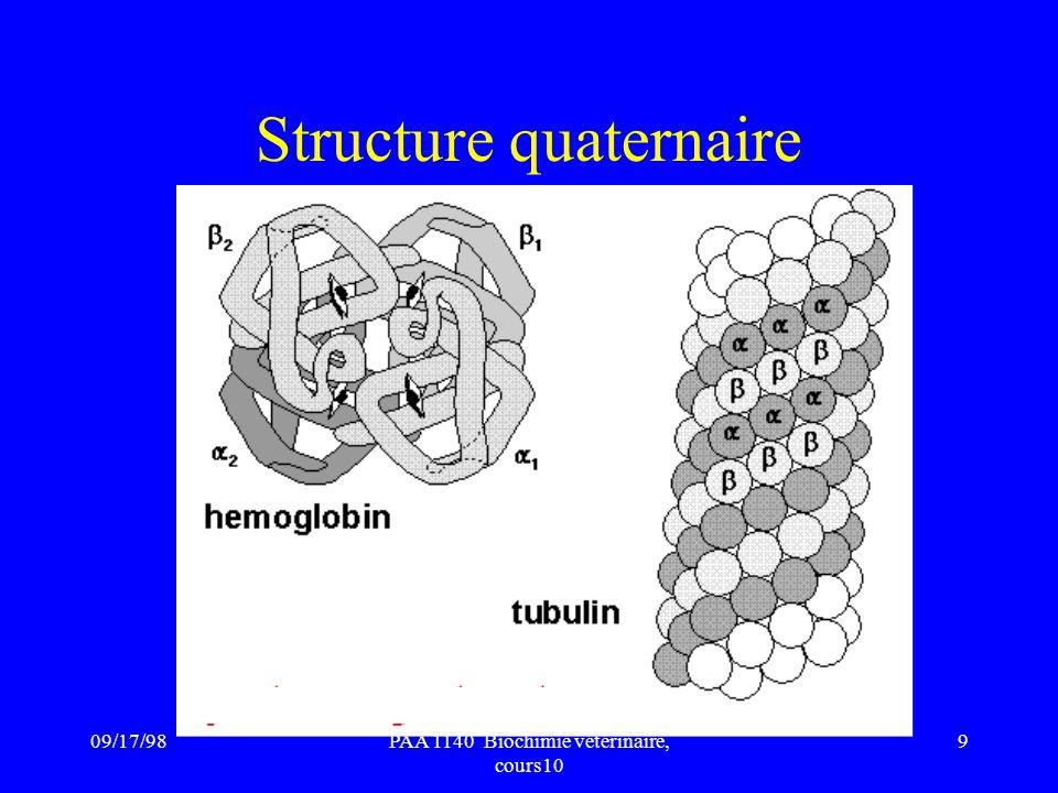 09/17/989PAA 1140 Biochimie vétérinaire, cours10 Structure quaternaire