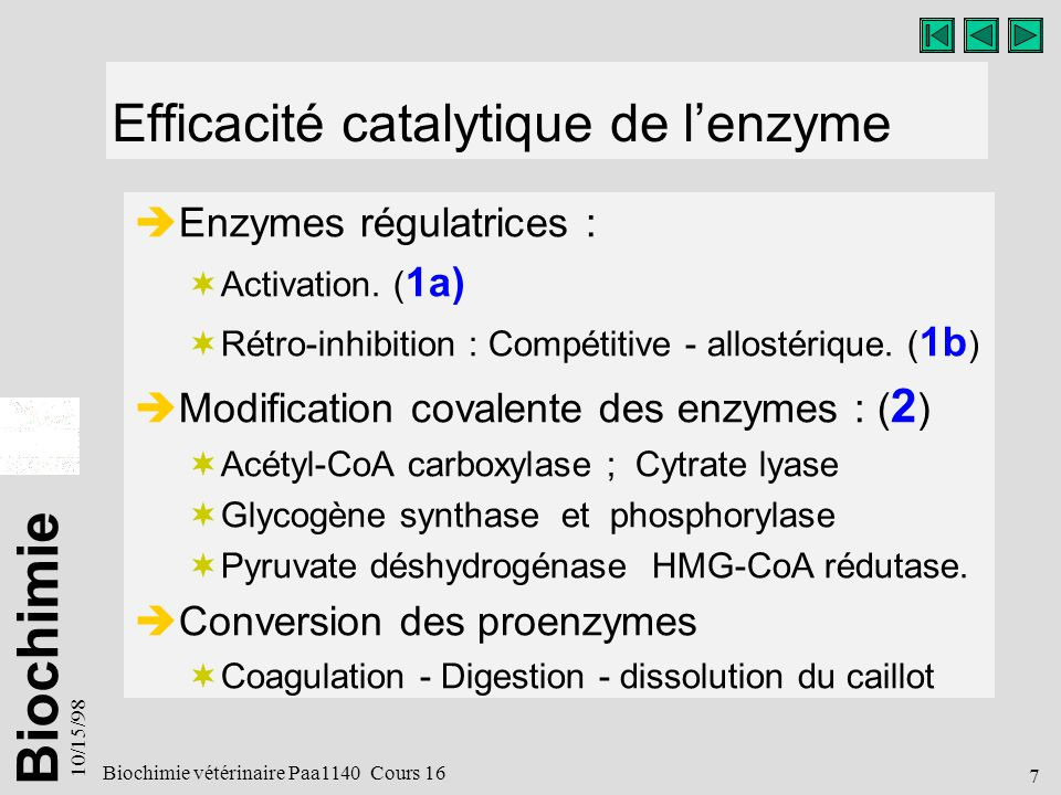 Biochimie 10/15/98 7 Biochimie vétérinaire Paa1140 Cours 16 Efficacité catalytique de lenzyme Enzymes régulatrices : Activation.