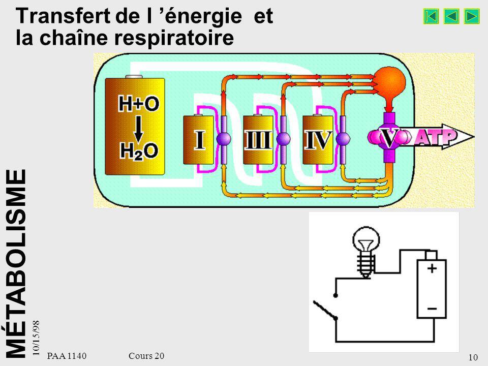 MÉTABOLISME 10/15/98 10 PAA 1140 Cours 20 Transfert de l énergie et la chaîne respiratoire