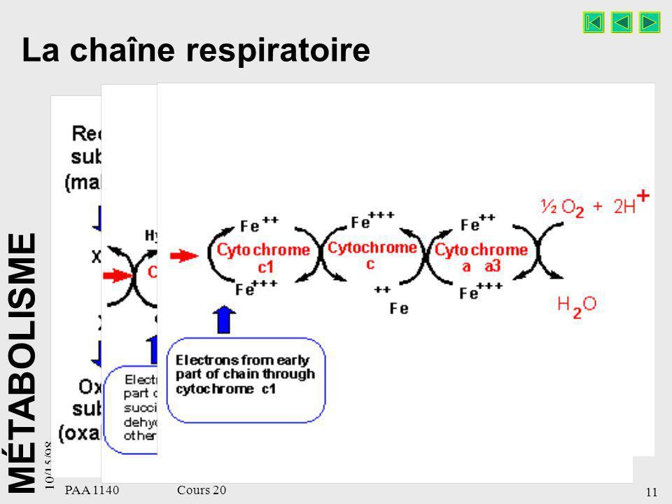 MÉTABOLISME 10/15/98 11 PAA 1140 Cours 20 La chaîne respiratoire