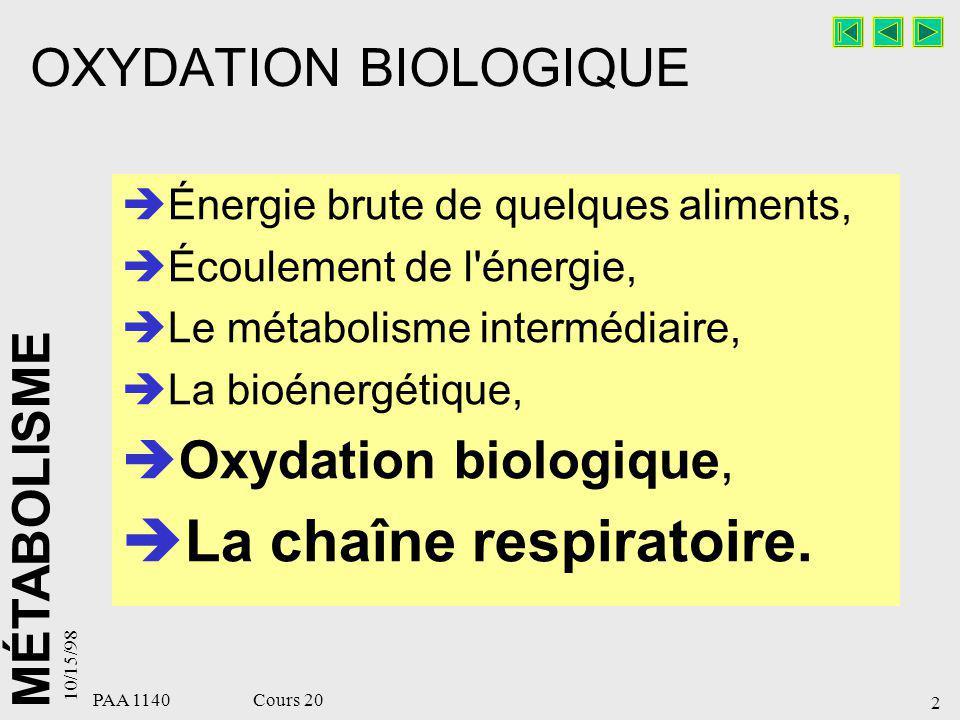 MÉTABOLISME 10/15/98 3 PAA 1140 Cours 20 Oxydation biologique Oxydation : perte d électrons Réduction : grain d électrons Oxydation : –Perte d un électron : Fe ++ ---> Fe +++ –Déshydrogénation : SH 2 ---> S + H 2 –Fixation d un oxygène sur le substrat S +O 2 -------> S-OH.