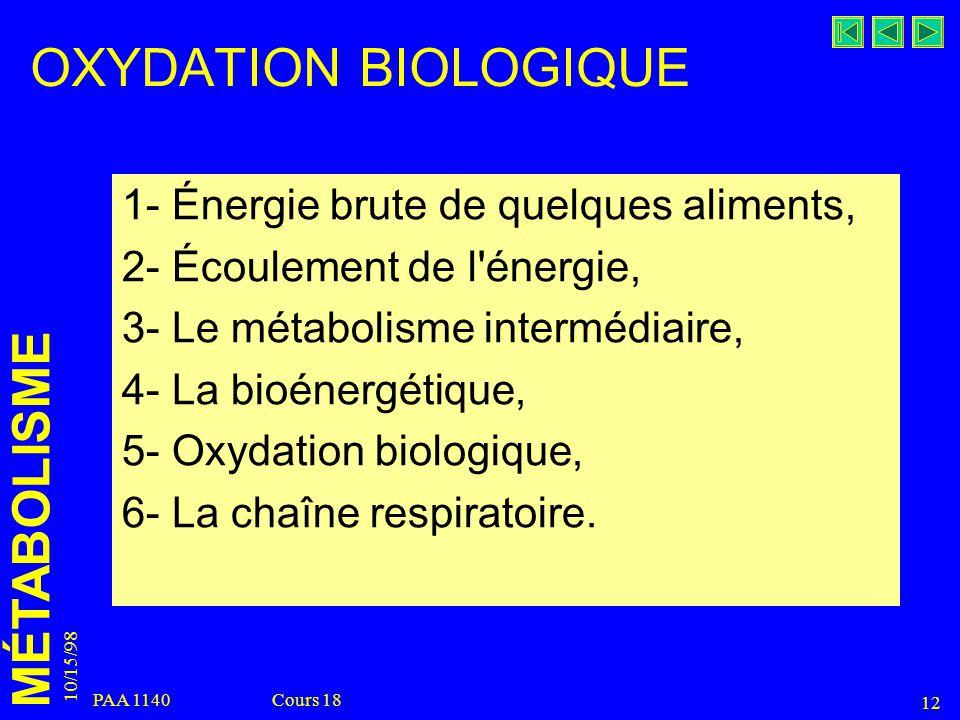 MÉTABOLISME 10/15/98 12 PAA 1140 Cours 18 OXYDATION BIOLOGIQUE 1- Énergie brute de quelques aliments, 2- Écoulement de l'énergie, 3- Le métabolisme in
