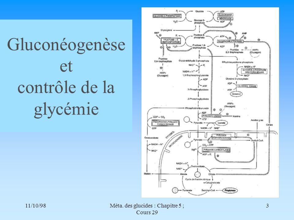 11/10/983Méta. des glucides : Chapitre 5 ; Cours 29 Gluconéogenèse et contrôle de la glycémie