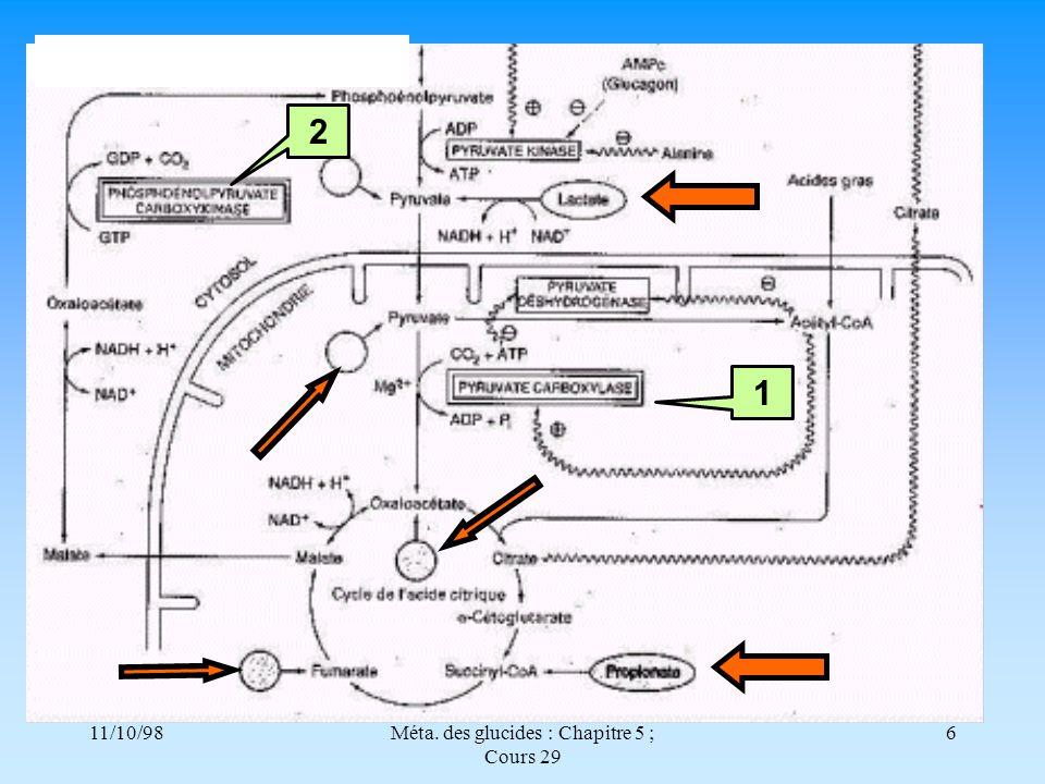 11/10/986Méta. des glucides : Chapitre 5 ; Cours 29 12