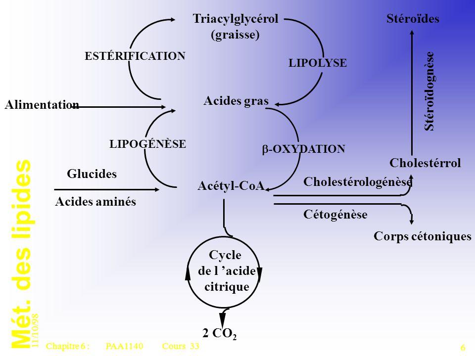 Mét. des lipides 11/10/98 6 Chapitre 6 : PAA1140 Cours 33 2 CO 2 Acétyl-CoA Corps cétoniques Cétogénèse Acides aminés Glucides Cholestérologénèse Chol