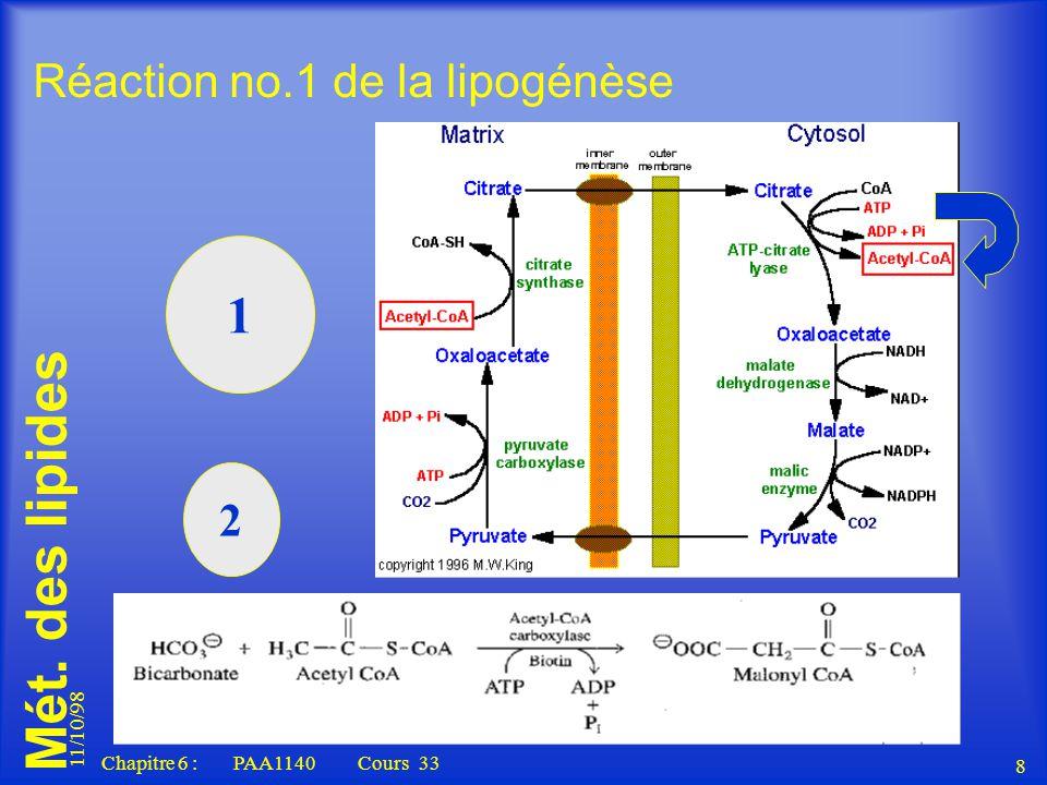 Mét. des lipides 11/10/98 8 Chapitre 6 : PAA1140 Cours 33 Réaction no.1 de la lipogénèse 1 2