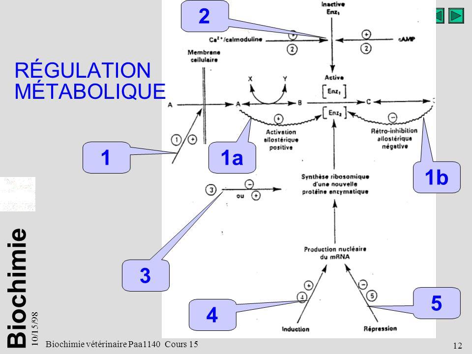Biochimie 10/15/98 12 Biochimie vétérinaire Paa1140 Cours 15 RÉGULATION MÉTABOLIQUE 2 3 4 5 1 1a 1b