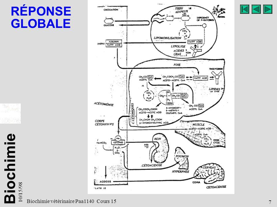 Biochimie 10/15/98 7 Biochimie vétérinaire Paa1140 Cours 15 RÉPONSE GLOBALE