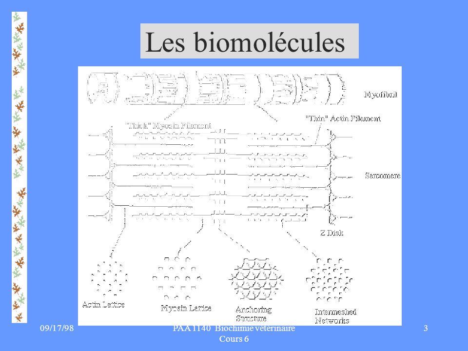 09/17/9814PAA 1140 Biochimie vétérinaire Cours 6 E: QUESTIONS SUR LE CHAPITRE 1.