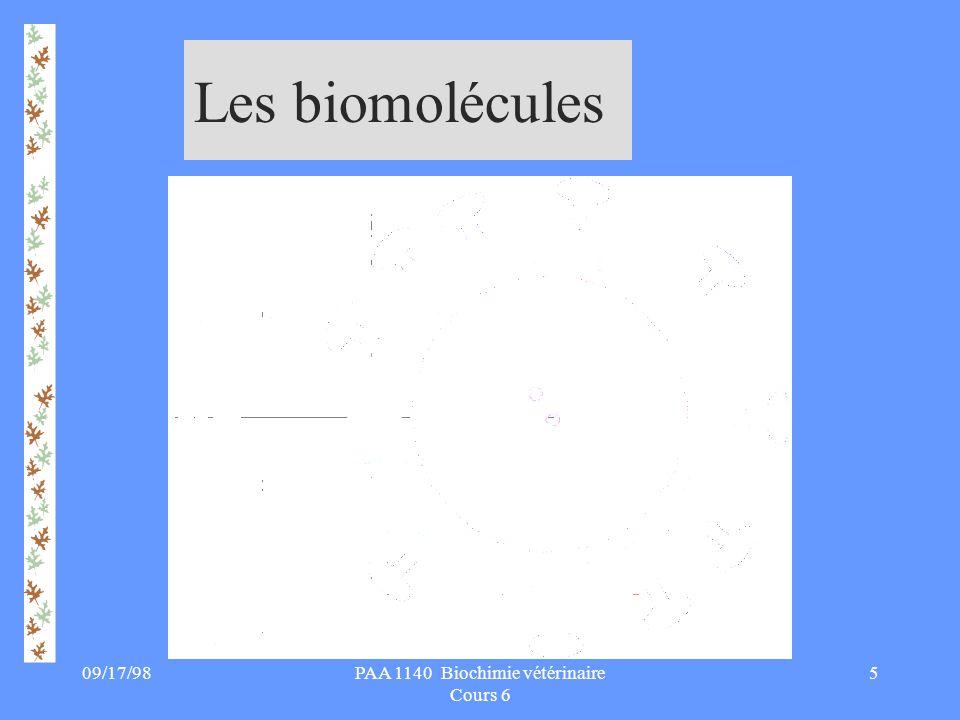 09/17/986PAA 1140 Biochimie vétérinaire Cours 6 Classification des A.A §Hydrophobe Alanine Isoleucine Leucine Méthionine Phénylalanine Tyrosine Proline Tryptophane Valine §Hydrophile Ac.