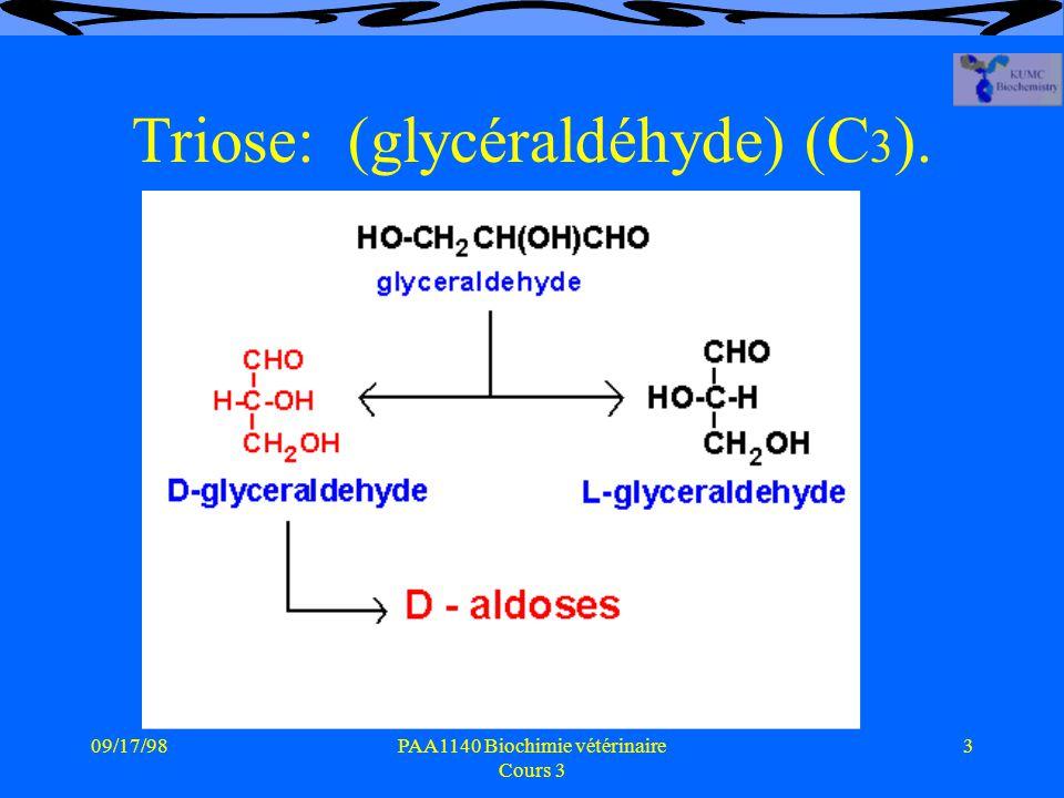 09/17/983PAA1140 Biochimie vétérinaire Cours 3 Triose: (glycéraldéhyde) (C 3 ).