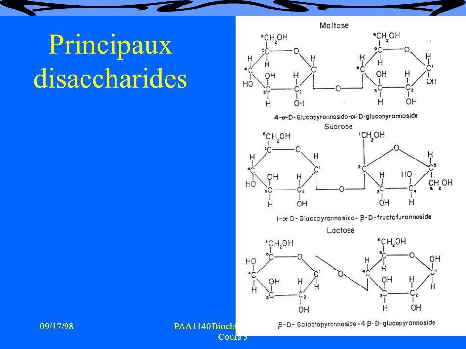 09/17/988PAA1140 Biochimie vétérinaire Cours 3 Principaux disaccharides