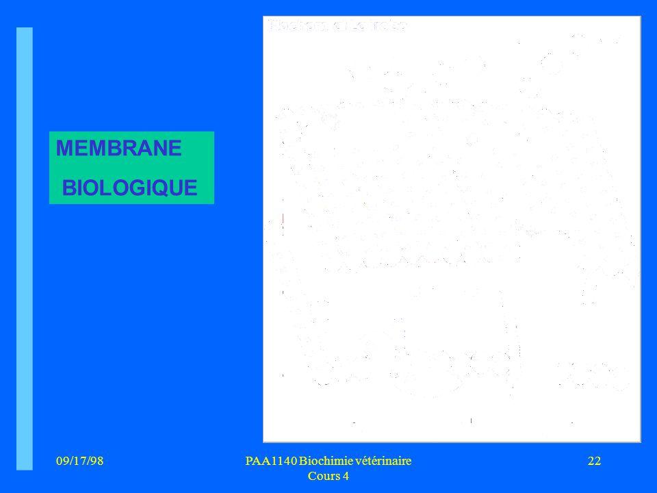 09/17/9822PAA1140 Biochimie vétérinaire Cours 4 MEMBRANE BIOLOGIQUE