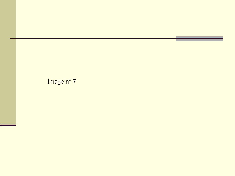 Image n° 7
