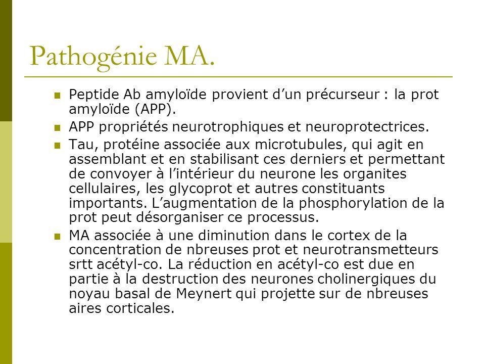 Pathogénie MA. Peptide Ab amyloïde provient dun précurseur : la prot amyloïde (APP). APP propriétés neurotrophiques et neuroprotectrices. Tau, protéin