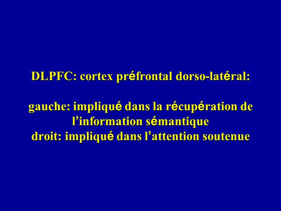 DLPFC: cortex pr é frontal dorso-lat é ral: gauche: impliqu é dans la r é cup é ration de l information s é mantique droit: impliqu é dans l attention